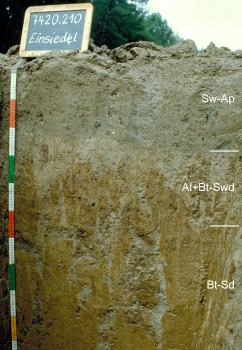 Das Foto zeigt ein Bodenprofil unter Acker. Es handelt sich um ein Musterprofil des LGRB. Das in drei Horizonte gegliederte Profil ist 1,10 m tief. Eine Tafel links oben nennt Nummer und Namen des Profils.