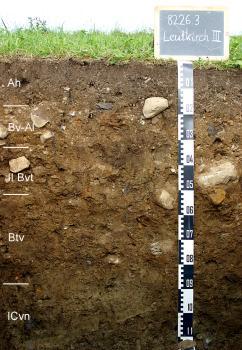 Das Foto zeigt ein Bodenprofil unter Grünland. Es handelt sich um ein Musterprofil des LGRB. Das fünf Horizonte umfassende Profil ist 1,10 m tief.