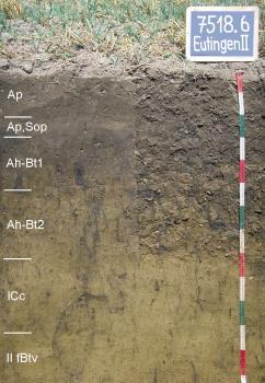 Das Foto zeigt ein Bodenprofil unter Acker. Es handelt sich um ein Musterprofil des LGRB. Das sechs Horizonte umfassende Bodenprofil ist über 1,30 m tief.