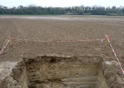 Das Foto zeigt im Vordergrund den oberen Teil eines aufgegrabenen Bodenprofils. Das Profil befindet sich auf einem kahlen braunen Acker und ist mit rot-weißen Bändern gesichert. Im Hintergrund ist ein bewaldeter Damm zu sehen.