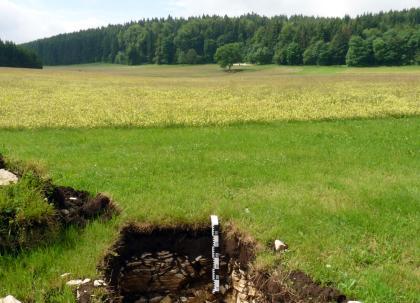 Das Foto zeigt ein aufgegrabenes, teilweise steiniges Bodenprofil inmitten einer grünen Wiese. Im Hintergrund schließen sich verschiedene Nutzflächen sowie ein Waldstreifen an.
