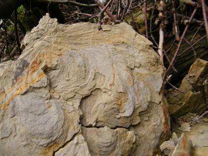 Blick auf einen aufrecht stehenden, graubraunen, ausgefransten Gesteinsblock. Über die Oberfläche verteilt sind orangefarbene Streifen. Unten gehen Risse durch den Gesteinsblock.
