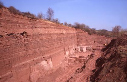 Blick auf eine lange und hohe Steinbruchwand, die von links nach rechts abnimmt. Das waagrecht gebankte Gestein hat eine rostrote Farbe.