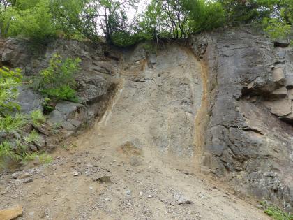 Teilansicht eines links und oben bewachsenen Steinbruches. Das blaugraue Gestein wird in der Mitte des Bildes durch eine gelblich braune Rutschung unterbrochen.