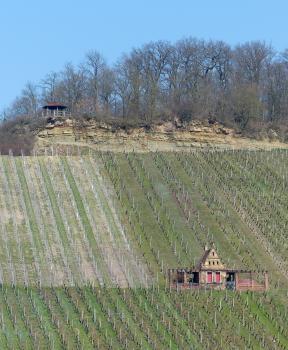 Am oberen Ende sehr steiler Rebterrassen kann man eine langgezogene, felsige Böschung erkennen, die mit einer Aussichtsplattform links versehen sowie mit Wald bestanden ist. Rechts unten steht ein Gebäude inmitten der Rebstöcke.