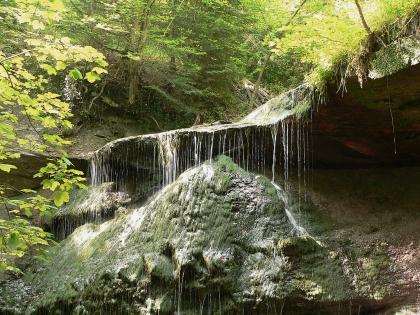 Blick auf dunkelgrünes, pyramidenförmiges Gestein an einem Waldhang. Über dem Gestein verläuft ein breiter, dachartiger Sims. Von dort überspült ein dünner Wasserfall das Gestein.