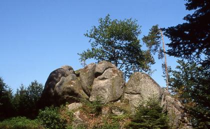 Blick auf eine Ansammlung größerer grauer Felsen, mit gerundeten Kanten, bemoosten Stellen und teilweisen Sprüngen. Die Felsblöcke liegen auf einer Kuppe, daneben und dahinter stehen Bäume.