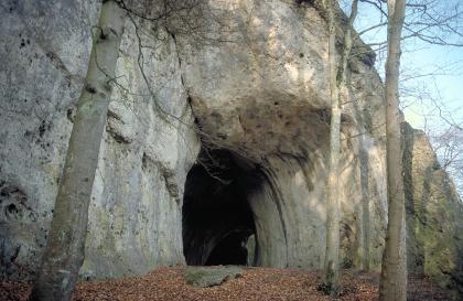 Blick auf eine hohe, rechts vorgewölbte graue Felswand. Unter der Wölbung ist eine Höhle sowie ein zweiter Eingang sichtbar. Im Vordergrund stehen drei hohe, schlanke Bäume.