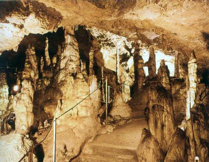 Blick in das Innere einer Höhle. Entlang eines aufwärts führenden, mit Halteseilen gesicherten Weges sind zahlreiche, vom Boden zur Decke wachsende Tropfsteinsäulen zu sehen.