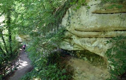Das Bild zeigt eine rechts aufsteigende, im Bogen nach links verlaufende gelblich graue Felswand. Der Fels ist dicht bewachsen und kragt links etwas über. Links führt zudem ein abwärts verlaufender, bewaldeter Wanderweg an der Felsformation entlang.