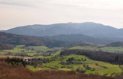 Blick von erhöhter Warte auf eine hügelige Landschaft mit Wiesen, Höfen, einzelnen Rebflächen und Wäldern. Rechts ist auf einem abgeflachten Hügel eine Burgruine zu erkennen. Im Hintergrund erhebt sich ein Bergmassiv.