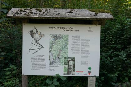 Das Foto zeigt eine bebilderte, überdachte Schautafel am Kalkofen-Erlebnispfad im Wollbachtal. Auf der Tafel ist ein Kalkbrennofen, eine Karte und eine Fledermaus zu sehen.