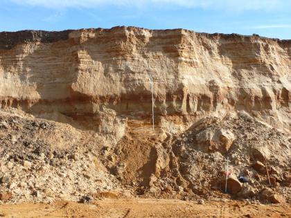 Abbauwand einer Sandgrube in der Goldshöfe-Sande abgebaut werden.