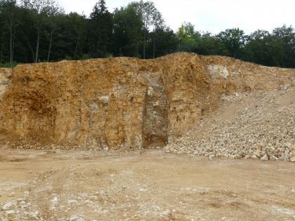 Zu sehen ist eine gelblich braune Steinbruchwand in deren Mitte sich eine Spalte mit dunklerem Material vom restlichen Gestein farblich absetzt. Oberhalb der Wand sind Bäume zu erkennen. Rechts im Bild liegt hellbraunes Lockergestein.