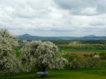 Hinter weißblühenden Obstbäumen breitet sich eine flachwellige Landschaft mit Wiesen und Feldern aus. Zum Hintergrund hin folgen Waldgürtel sowie bewaldete Höhenzüge mit zwei Bergspitzen links und rechts außen.