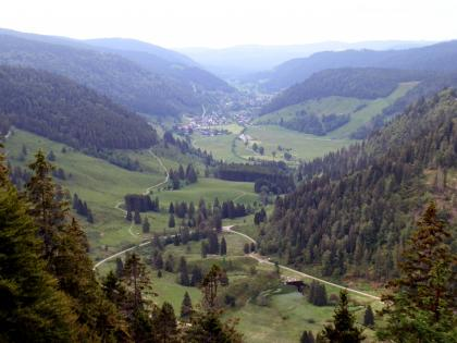 Von hoch oben blickt man auf in breites, rechts und im Hintergrund bewaldetes, Tal. Im Vordergrund sind bewachsene längliche Hügel erkennbar.