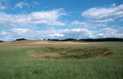 Das Bild zeigt eine grüne Wiese, auf der sich eine ovale, dunkler gefärbte Vertiefung mit unterschiedlichem Bewuchs gebildet hat. Im leicht hügeligen Hintergrund sind Ackerflächen und Waldstreifen erkennbar.