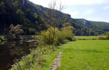 Das Bild zeigt links einen Fluss und rechts eine grüne Wiese, deren Rand zum Wasser hin von Büschen und Bäumen begrenzt wird. Im Hintergrund steil aufragende, zum Teil mit Felsen durchsetzte, bewaldete Hänge spiegeln sich im Fluss.