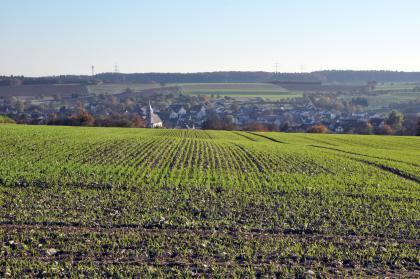 Im Vordergrund sieht man einen welligen, vertikal und horizontal gebahnten Acker mit frischem Pflanzenwuchs. Dahinter liegt in einer Mulde eine Siedlung; darüber ein Hang mit weiteren Äckern und Wald.