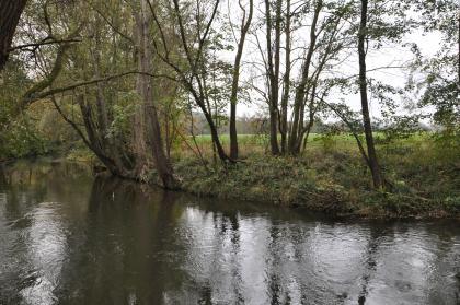Das Bild zeigt einen im Bogen verlaufenden Fluss mit von Bäumen und Hecken bewachsenem Ufer. Das Wasser hat dort, wo die Bäume es nicht abdunkeln, wie der Himmel eine graue Farbe.