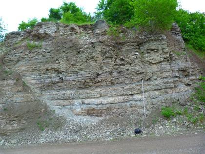 Blick auf eine graue, unten hellgraue Gesteinswand. Die unregelmäßige Kuppe oben ist bewachsen. Unten liegen kleinere Schutt- und Abraumhaufen. Rechts ist eine Messlatte angelehnt.