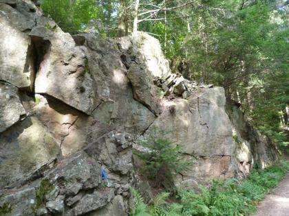 Der Zweiglimmer-Granit ist meistens homogen gleich- und mittelkörnig.