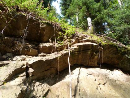 Der Randgranit ist ein tektonisch deformiertes Granitoid mit zahlreichen Rahmengesteinseinschlüssen.