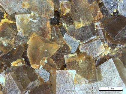 Flussspatkristalle aus der Grube Clara.