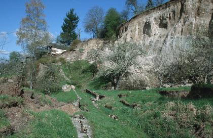 Das Bild zeigt eine Abrisskante einer Rutschung. Diese verläuft als steile, graue Felswand von vorne rechts nach hinten durchs Bild. Davor befindet sich eine unebene Wiese mit kleinen Bäumen. Im Hintergrund ist eine Hütte zu sehen.