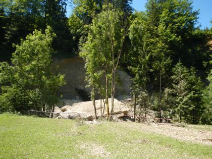 Auf dem Bild blickt man von einer Wiese aus auf einige Bäume, hinter denen eine Felswand zu sehen ist. Unterhalb der Felswand liegt ein großer Felsblock. Vor den Bäumen wurde eine Absperrung mit Absperrband errichtet.