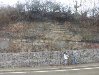 Hinter einer mannshohen Steinmauer erhebt sich ein steiler Gesteinshang. Kuppe und Teile des Hanges sind mit Bäumen und Sträuchern bewachsen. Der Hang ist zudem mit Netzen gesichert.