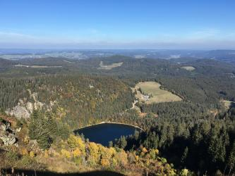 Blick aus großer Höhe über bewaldete Berge auf einen fast rechteckigen, kleinen dunklen See. Am Berg links sind schroffe Felsen zwischen den Bäumen erkennbar, rechts und im Hintergrund liegen grüne Rodungsinseln.