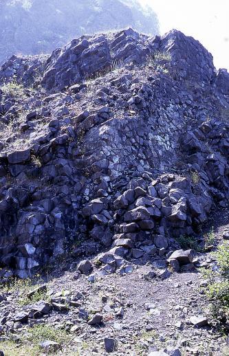 Das Bild zeigt einen Aufschluss aus dunklen Basaltsäulen, der leicht von Gräsern überwachsen ist.