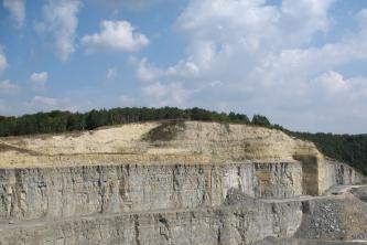 Das Bild zeigt den oberen Teil einer langen, grauen Steinbruchwand. Die gewölbte Kuppe darüber ist hellbraun gefärbt und bewaldet.