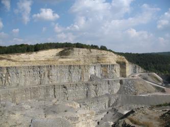 Gesamtansicht einer großen, weißlich grauen Steinbruchwand mit mehreren Stufen. Die noch bewaldete, gerundete Kuppe ist gelblich braun.