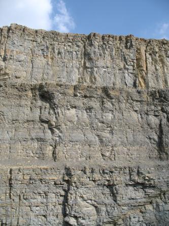 Blick auf eine hohe Steinbruchwand mit drei leicht voneinander abgegrenzten Stufen. Die Gesteinsfarbe ist hellgrau bis grau mit gelblichen Streifen.