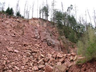 Blick auf einen rötlich braunen Hang mit größeren Steinblöcken oben und einer Schutthalde aus kleineren Steinen unten. Kuppe und rechte Seite des Hanges sind mit Bäumen bewachsen.