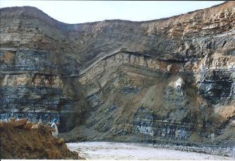 Das Bild zeigt eine Gesteinswand in einem Steinbruch aus schichtigem, dunkelgrauem und beigem Gestein. In der Mitte der Wand hat sich entlang einer Störung eine nach unten geöffnete Falte gebildet.