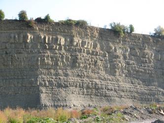 Blick auf eine hohe Steinbruchwand mit größeren und kleineren Schichten grauem bis gelblich grauem Gestein. Am Boden und auf der Kuppe zeigt sich Bewuchs.
