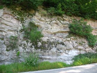 Das Bild zeigt einen teilweise bewachsenen Felshang an einer Straße. Das helle, zerfurchte Gestein hat in der Bildmitte größere dunkle Flecken.