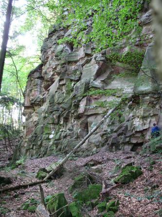 Das Bild zeigt eine hohe, aus großen Blöcken zusammengesetzte Felswand. Das grünlich graue Gestein wird rechts oben teilweise von Baumästen verdeckt. Ein abgestürzter Baumstamm lehnt sich noch an den Fels.