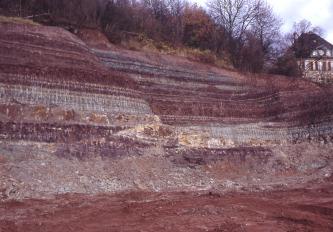 Es ist eine Wand aus geschichtetem rotem und rot-grauem bis gelbem Gestein zu sehen. Die linke Seite ist auf die rechte Seite der Wand aufgeschoben, es ist ein deutlicher Versatz an den hellen Schichten zu erkennen. Über dem Aufschluss wachsen Bäume.