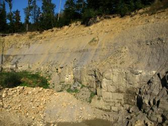 Aufschluss aus hellgelbem und grauem Gestein. Im unteren Bereich steht das Gestein in Bänken an, darüber ist es feiner und die Wand schräg nach hinten geneigt. Vor dem Aufschluss links befindet sich eine Schuttansammlung. Auf der Kuppe wachsen Bäume.
