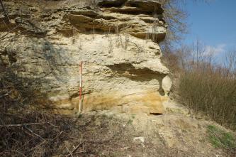 Das Bild zeigt einen grob zerklüfteten Gesteinsaufschluss, hellbraun, am Fuß orangefarben. Das Gestein füllt, von links nach rechts, drei Viertel des Bildes aus. Rechts und links, am Fuß des Gesteins, wächst Gestrüpp.