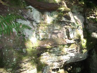 Blick auf helles Felsgestein mit rötlich grauen Stellen am linken Bildrand sowie in der Mitte. Das Gestein ist teilweise bemoost und bewachsen. Rechts unten zeigt sich eine dunkle Nische.