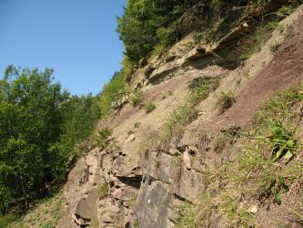 Seitlicher Blick auf einen von rechts nach links abfallenden, teilweise bewachsenen, rötlich braunen bis hellbraunen Hang. Am Fuß des Hanges steht quaderförmiges Gestein an, oben gebanktes. Linke Seite und Kuppe des Hanges sind bewaldet.