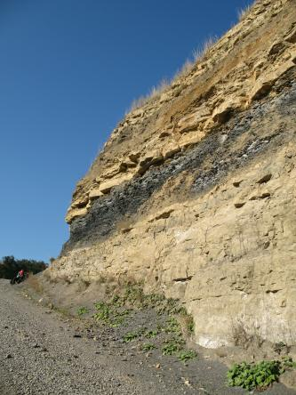 Das Bild zeigt einen Aufschluss, der vom rechten Bildrand nach links hinten ausläuft. Davor befindet sich ein grauer Schotterweg. In der unteren Hälfte besteht der Aufschluss aus hellgelbem, bankigem Gestein, darüber dunkelgraues und dunkelgelbes Gestein.