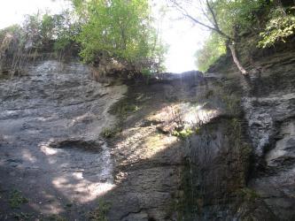 Blick auf eine mit Bäumen und Büschen bewachsene, im Schatten liegende Gesteinswand. Rechts tritt ein schmaler Wasserfall über die oberste Stufe und fließt senkrecht nach unten.