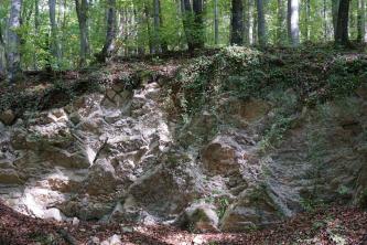 Blick auf freiliegendes Gestein an einem auf den Betrachter gerichteten Waldhang. Der obere Teil des blockhaften, zerklüfteten Gesteins ist mit Moos und herabhängenden Pflanzen überdeckt. Auf der Kuppe stehen Bäume.