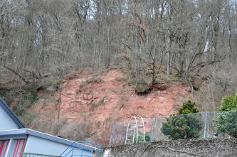 Das Bild zeigt einen mit schlanken Bäumen bestandenen Hang, an dessen Vorderseite rötlich graues Gestein offenliegt. Links unten ist ein Haus angeschnitten, rechts befindet sich ein Zaun.